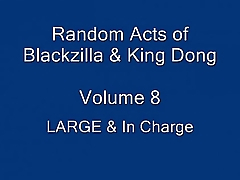 LARGE &amp_ In Charge - Random Acts of Blackzilla &amp_ King Dong - Vol.8